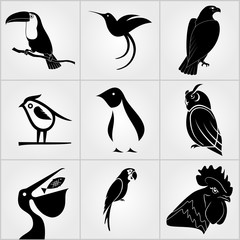 Set of Birds icons. Penguin, Bird, Pelican, Humming Bird, Owl,  Eagle, Cock, Rooster, Toucan and Parrot icons