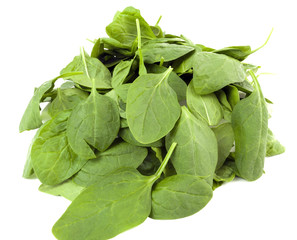 Fresh baby spinach. Isolated.