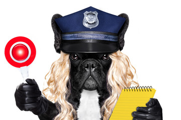 policewoman dog with  ticket fine