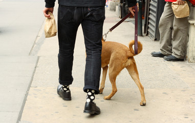 Walking with Paper Bag and Dog