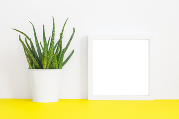 White frame mock up and houseplant.