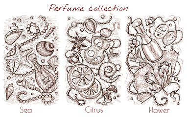 Hand drawn collection with sea, citrus and flower fragrances