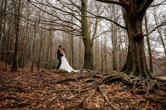 Newlywed couple in the forest