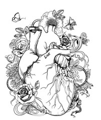 heart - anatomy picture with flowers