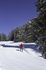 einsamer Skilangläufer auf breiter Loipe