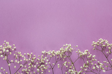 The border of delicate little white flowers on violet background