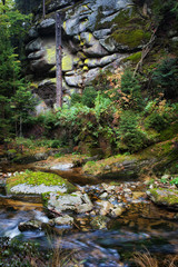 Cliffside Stream in the Mountains