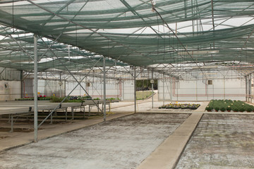 Interior of an empty greenhouse in a commercial garden center