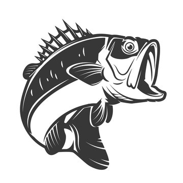 bass fish icons isolated on white background. Design element fo