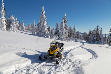 Snowmobile in forest