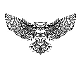 Hand drawn vector doodle  owl illustration.  Adult antistress coloring page.