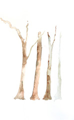 Bare trees on white, watercolor painting