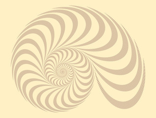 a snail shell spiral pattern in ivory shades