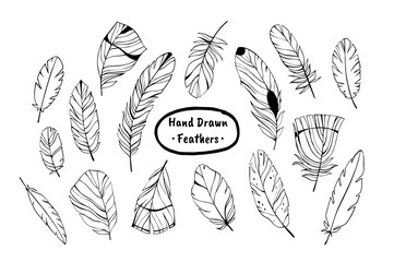 Vector ink set. Hand drawn feathers.