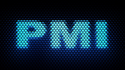 PMI acronym (Privilege Management Infrastructure)
