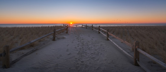 Pathway to the beach during a sunrise in New Jersey  Wall mural