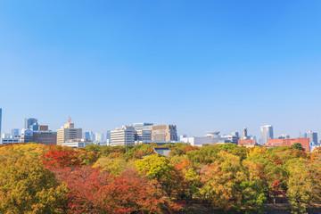 Aerial view of Osaka cityscape in autumn season at Osaka, Japan