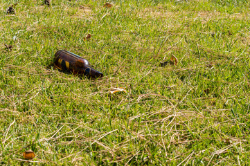 Glass bottle thrown on the green grass outdoors