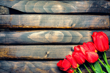 Tulips. Easter. Red tulips on a background of dark boards. Spring flowers. Easter 2016. Springtime. Vintage processing. Space for text. Toned image.