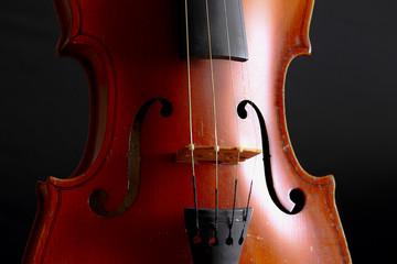 Music and elegance - Violin