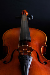 Music and elegance - Violin