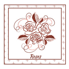 A beautiful bouquet of roses in a frame on white background