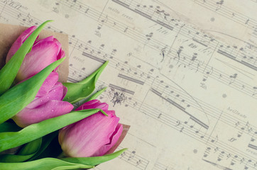 Bouquet of pink tulips with musical notes