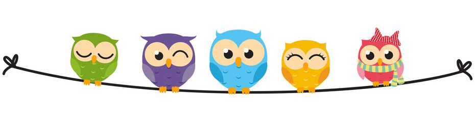 Happy Owl family sit on wire