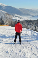 skier male on snowy mountain man full length back view portrait  with copy space