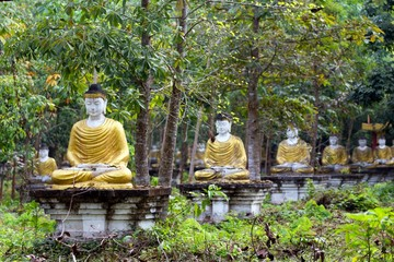 Sitting Buddha statue row