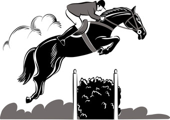 Horse and rider during a jumping competition hurdles.