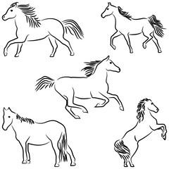 Five stylized horses isolated on white background.