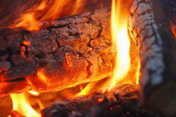 Сampfire. Closeup.