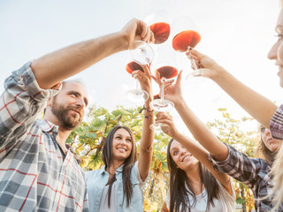 Group young friends toast with glasses of wine in a vineyard