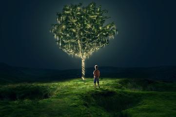 Junge steht vor Baum mit Lichterketten