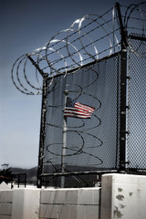 Caged Freedom