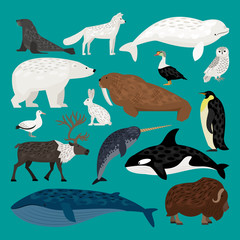 Set of Arctic animals waterfowl, birds and living on the ground
