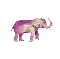 Elephant picture. Isolated low poly animal. Mammal of africa.