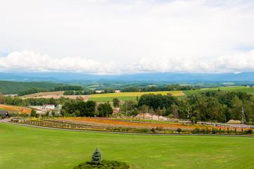 北海道の広大なカラフルの丘