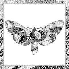 Vector black and white Death's-head Hawkmoth illustration
