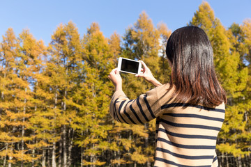 Woman take photo by mobile phone in autumn forest