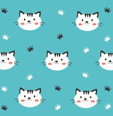 cute white cat in blue background