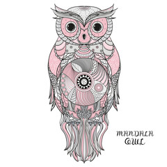 Owl. Design Zentangle.