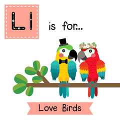 Cute children ABC alphabet L letter tracing flashcard of Love Birds for kids learning English vocabulary in Valentines Day theme.
