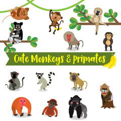 Cute Monkey and Primate Animals cartoon on white background.