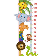 zoo animal height measure - vector illustration, eps