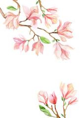 magnolia watercolor