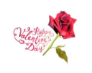 Happy Valentine's Day! Red rose