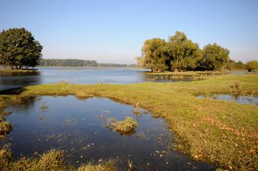 Elbe river landscape during flood