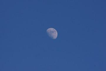 Lune de jour